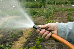 Watering the garden Stock Photos