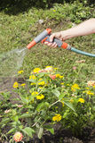 Watering the garden Royalty Free Stock Photography