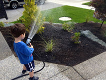 Watering the garden Royalty Free Stock Photos