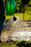 Watering the garden. Green watering can in a beautiful spring day Royalty Free Stock Photos