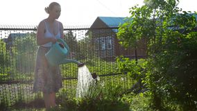 Happy female gardener waters plants and flowers with a watering can in sunny garden. stock video footage