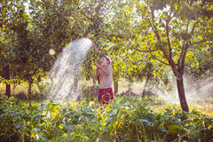 Watering of a garden Stock Image