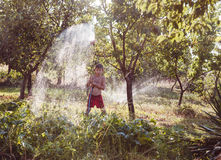 Watering of a garden Royalty Free Stock Photography