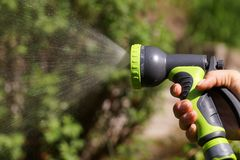 A sunlit stream of water. Watering garden crops with a watering gun royalty free stock image