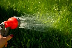 Watering garden equipment - hand holds the sprinkler hose for irrigation plants. Gardener with watering hose and sprayer royalty free stock photography