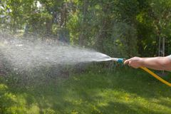 Watering the garden. Hose in a woman`s hand. Watering the garden. A hosepipe in the hand of a woman royalty free stock photography