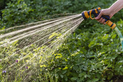 Watering garden Royalty Free Stock Images