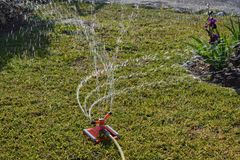 Watering garden with a sprinkler royalty free stock images