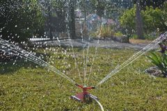 Watering garden with a sprinkler royalty free stock photography