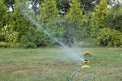Watering garden Stock Photos