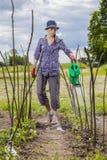 Watering garden Stock Images