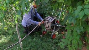 Watering in the Garden stock video