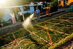 Watering Good Friday processional carpet, Antigua, Guatemala Royalty Free Stock Image