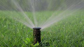 Watering the grass5, agriculture and water royalty free stock photography