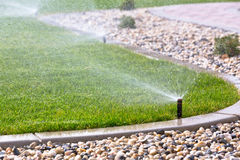 watering grass Stock Photo
