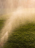 Watering grass in late sunlight Stock Photography