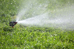 Watering the grass Royalty Free Stock Image