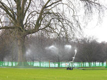 Watering the grass Stock Image