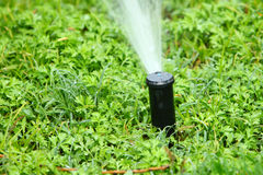 Watering grass in spring Royalty Free Stock Photo
