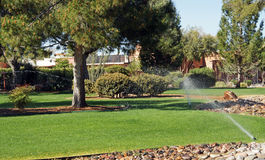 Watering the grass Royalty Free Stock Photography