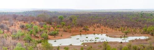 Watering Hole Victoria Falls Safari Lodge stock images