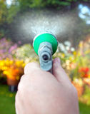 Watering hose pipe garden flowers. Watering flower bed with hose pipe. spraying plants with water in garden stock photography