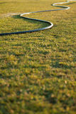 Watering Hose. On wet grass Royalty Free Stock Images