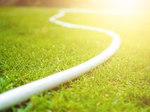 Watering hoses on a lawn. White watering hoses on a green lawn. Summer day. Sunny royalty free stock photos