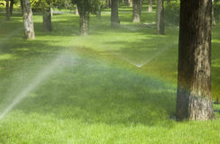 Watering the lawn Stock Images