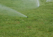 Watering  lawn of grass roll Stock Image