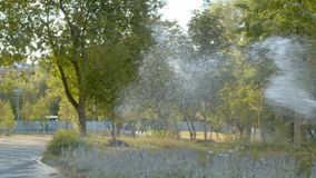Watering the lawn in the park. The water falling like a rain stock footage