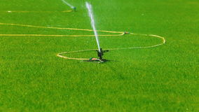 Watering the lawn for sports competitions. stock footage