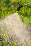 Watering the lawn with a sprayer Royalty Free Stock Images
