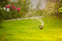 Watering the lown Royalty Free Stock Image