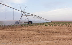 Watering machine in agriculture Royalty Free Stock Image