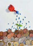 Watering money with a clay sprout Stock Image