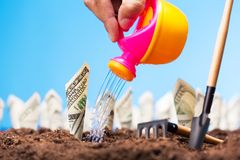 Watering the money sprigs Royalty Free Stock Photos
