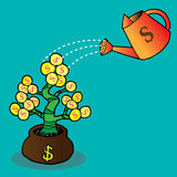 Watering a money tree. Money tree with golden coins, watering can and water drops Royalty Free Stock Photos