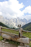 Watering in mountain. Panorama of Dolomites mountains in Italy during summer with a watering place Royalty Free Stock Images