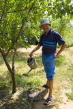 Watering Orchard Stock Images