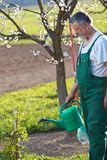 Watering orchard/garden royalty free stock photography