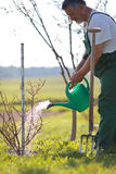 Watering orchard/garden Stock Photo