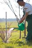 Watering orchard/garden Stock Photo