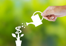Watering paper plant that produces money Royalty Free Stock Photos