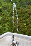 A watering place Royalty Free Stock Image