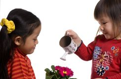 Watering a plant 2. Two young sisters working together to water a plant. Sharing, bonding, learning Stock Photography
