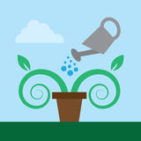Watering Plant Royalty Free Stock Photo