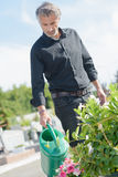 Watering plats in cemetary. Watering the plats in cemetary stock photo