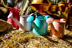 Watering pot Royalty Free Stock Photos