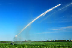 Watering the Sod Royalty Free Stock Images